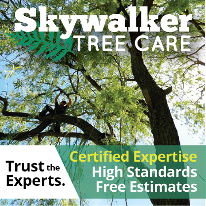 Certified Master Arborist and forester with 30 years' experience. Tree care for Sandpoint, Bonners Ferry and North Idaho.